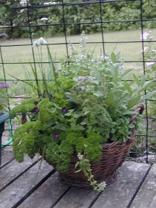 herb basket (225x300)